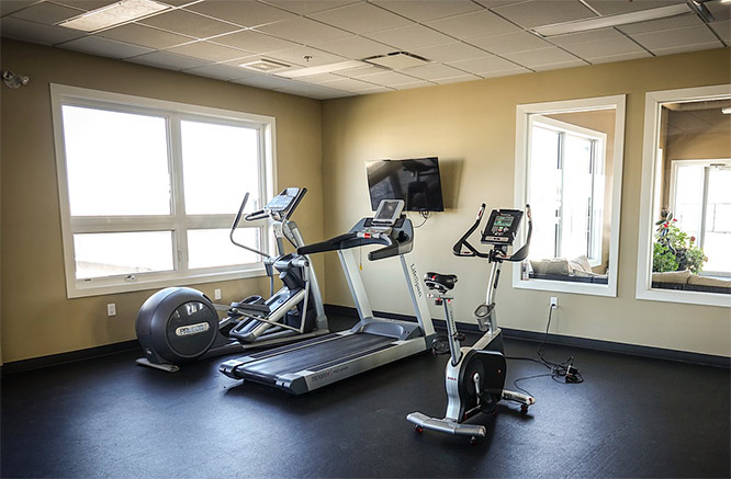 exercise bike and treadmill